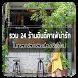 ร้านกาแฟ เชียงใหม่ by joobjang