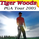 Guide for Tiger Woods PGA 2005 by putra6