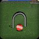 Croquet Pro by Top Secret Studios LLC