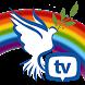 Chosen TV by iBOLZ