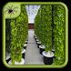 Indoor Urban Garden Design by Black Arachnia