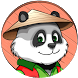 Provocarea Panda