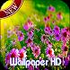 Garden Flowers Live Wallpaper by Sritong