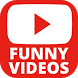 Watch Funny Videos by Oopsnod