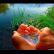 Как выжить без воды 3D книга by Ruby Digital Inc