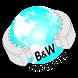 Rulman Dünyası B2B by ERYAZ SOFTWARE