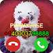 Pennywise Fake Call Prank 2018