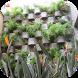 Vertical Garden Design by Ucuper