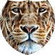 Glittering lion Live Wallpaper