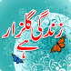 Zindagi Gulzar Hay Novel by Uaiapps