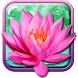 Lotus Flower Live Wallpaper by My Live Wallpaper