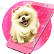 Cute Fluffy Puppy Live Wallpaper by stylish android themes