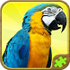 Animal Puzzle Games for Kids by Free Jigsaw Puzzles