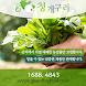 청개구리몰 - 산지직송 농수산물 종합 쇼핑몰! by VIEWPORT