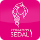 Peinados Sedal by Unilever Inc