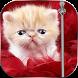 Kitty Zipper Lock Screen by selfie expert insta beauty