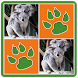 Animals Memory Game by Blue Yellow Studios