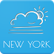 New York Weather Forecast by AlVl.Dev