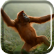 Wild Dance Crazy Monkey LWP by Live Wallpaper Channel