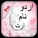 Stylish Urdu Name Art