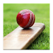 Cricket Dictionary by APP PARK
