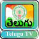 Telugu TV HD by FaTV