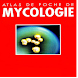 Atlas de Poche de Mycologie by Brouksy