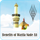 Benefits of Nade Ali (English)