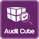 Audit Cube by Safety Line
