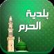 بلدية الحرم النبوي الشريف by system script