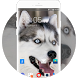 Theme for Motorola EX226 Husky Wallpaper by Theme Guru