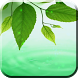 Green Leaves Live Wallpaper by BAMBULKA Developer