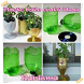 New plastic bottle craft ideas by karisma