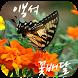 이봉석 꽃배달 by (주)유엔시스