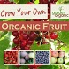 Growing Your Own Organic Fruit by theotherhat.biz