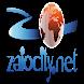 زايوسيتي.نت - zaiocity.net