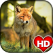 Fox Animal Wallpaper HD by Ash Tech Apps