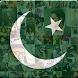 Go Pakistan