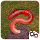 Dig Worms! by Metal Evolution Studio