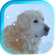 Winter Animals live wallpaper by AnastasiaApps