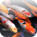 Koi 3D Video Wallpaper by LuckyEdit