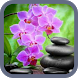 Orchid Wallpaper by bsure