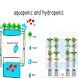 Aquaponic And Hydroponic by Dededroid