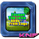 Can you Escape Birds From Cage by KNF ESCAPE GAME