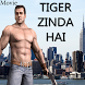 Movie video for Tiger Zinda Hai by Vinayak Inc