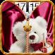 Teddy Bear Zipper Lock Screen by lifestyleapps