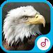 Ringtone Suara Elang Lengkap by Ringtonesia Lab