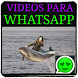 Videos for whatsapp