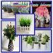 Flower Pot Idea by ndukdroid