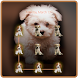 Puppy On Your AppLock by CheetahMobile AppLock Theme